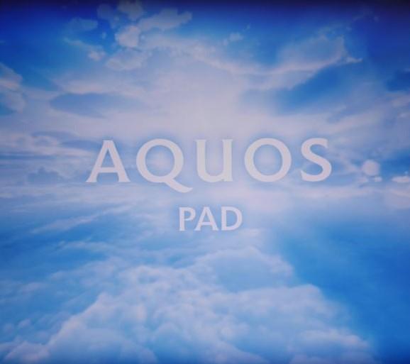 Aquos Pad(SH-08E)のスタンドに地デジケーブルを挿してフルセグ見たら快適だった