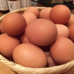 生卵はもりもり