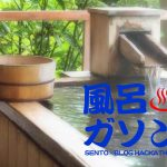 日帰り温泉をノンビリ楽しむブロガーイベント #風呂ガソン を主催しました。第2回もやります!