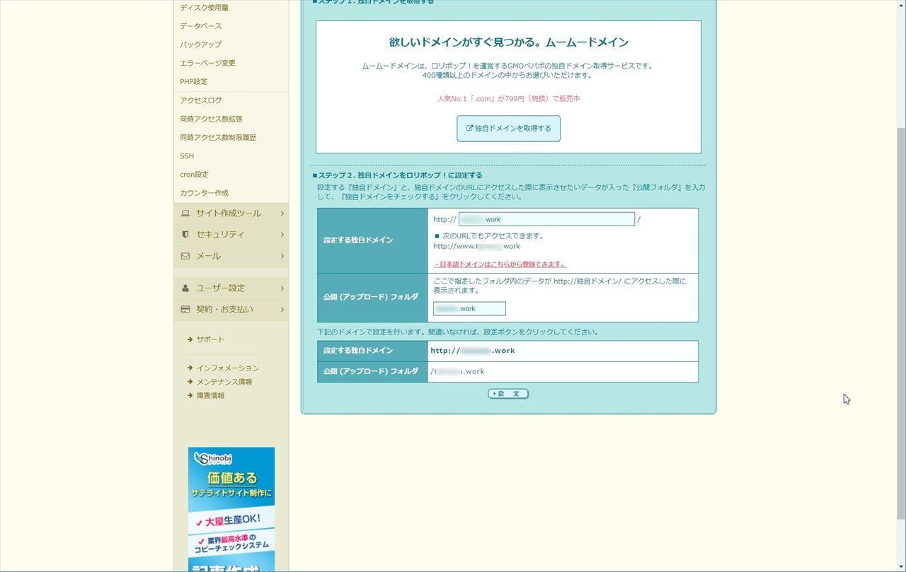 正しくドメインが登録できているときの画面